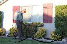 شركة الروناء لرش المبيدات بنجران