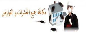 شركة رش مبيدات بخميس مشيط