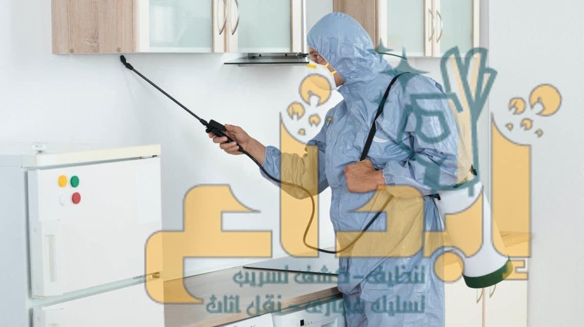 Photo of افضل شركة مكافحة حشرات ببيشه 0552339287  مع الضمان ابادة فورية وامنة