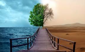 صورة أهمية المياه فى الحياة