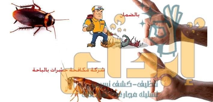 Photo of شركة مكافحة النمل الابيض بالباحة0507739580  اتصل الآن خدمة مخفضة