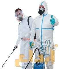Photo of كيفية تنظيف المنزل من الحشرات