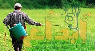 Photo of شركة رش مبيدات بمحايل عسير 0504610845 الضمان خصم (30%)