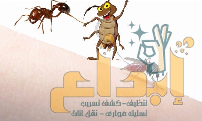 Photo of ارخص شركة مكافحة الحشرات بسكاكا -((  متاح للااااايجار 01210373836) مع الضمان  ( خصم 30 % )