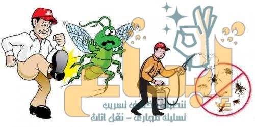 Photo of ارخص شركة مكافحة حشرات بالدرب0504610845 مع الضمان